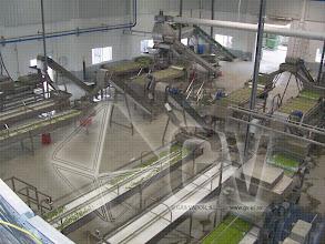 Photo: Gas Vapor S.L. - www.gv.iei.es Instalación de Áreas de Recepción y Cocido-Linea de Cocido
