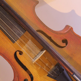 by Bill Givens - Novices Only Objects & Still Life ( violin, music, strings, old )
