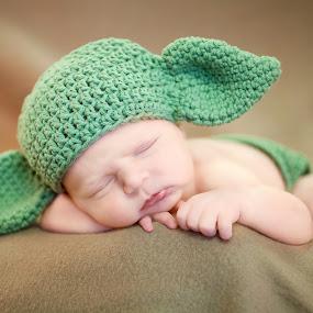 Yoda-he thinks by Melanie Ayers Wells-Photography - Babies & Children Babies ( crochet hat, yoda, baby, boy, newborn )