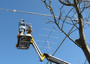 Photo: The sky is the limit. Oops,  no,  the limb is in the way.