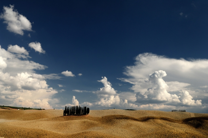 Desert Land di francescomartini