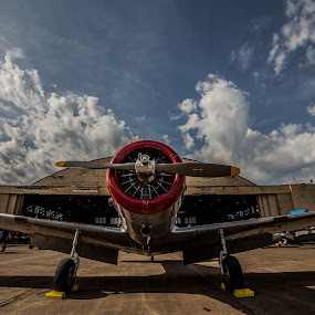 Arms Wide by Anthony Martinez - Transportation Airplanes