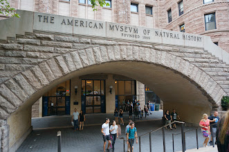 Photo: The American Museum of Natural History