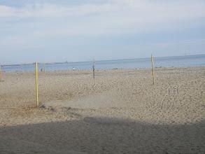 Photo: Beach near pier