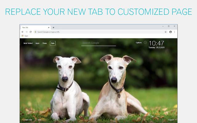 Greyhound Dog Wallpapers Custom Puppy New Tab