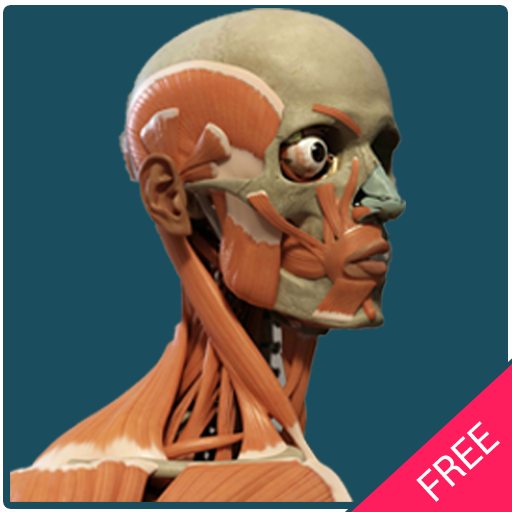 Human Body Free Offline Android APK Download Free By String Studio