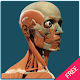 Download Human Body Free Offline For PC Windows and Mac