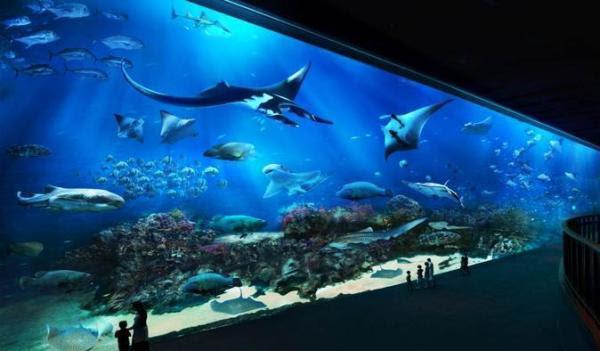 S.E.A. Aquarium Singapura
