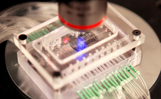 Lab-on-a-chip. File photo