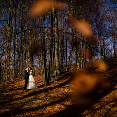 Wedding photographer Andy Casota (CasotaAndy). Photo of 27.11.2018