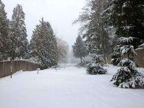 Photo: 2012 Jan snow - 0001