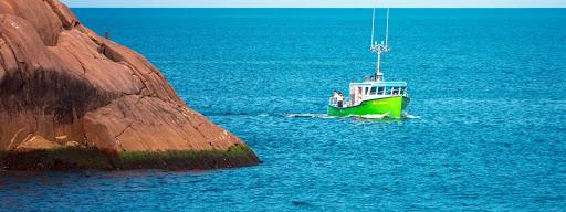 Green Boat, , Quidi Vidi Harbour, St. John's, 2017/08/12