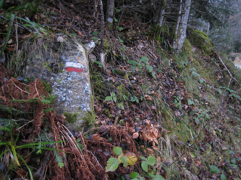 Photo: Marking the way (the GR-10, which runs the length of the Pyrenees).