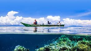 Earth's Natural Wonders -- Life at the Extremes thumbnail