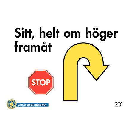 FORTSÄTTNINGSKLASS - Skyltar för Rallylydnad
