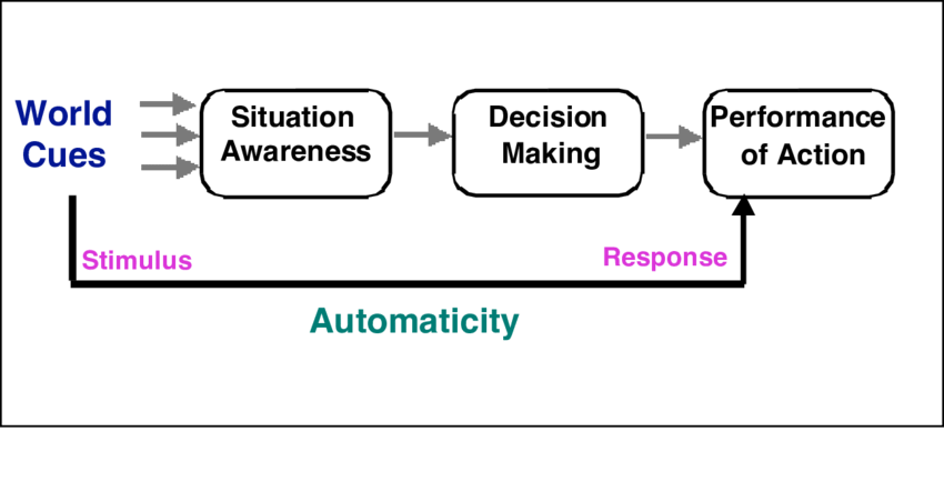 What is an automatic process in psychology? (A definitive guide)