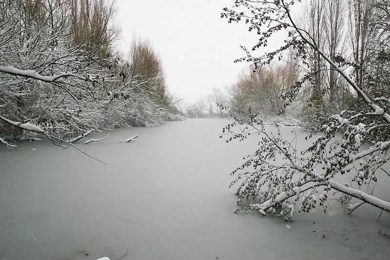 Lago ghiacciato di Fotodiale