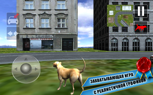 Собака Герой: Город Спасен