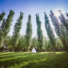 Wedding photographer Andrey Evstegneev (ea-foto). Photo of 04.12.2014