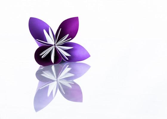 Origami di Laura Benvenuti