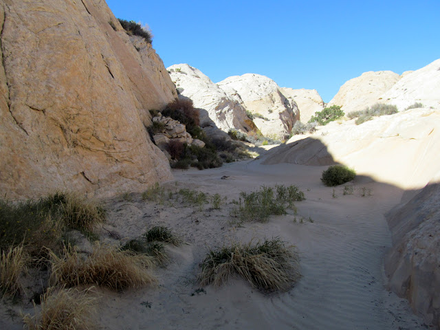 Sandy canyon bottom