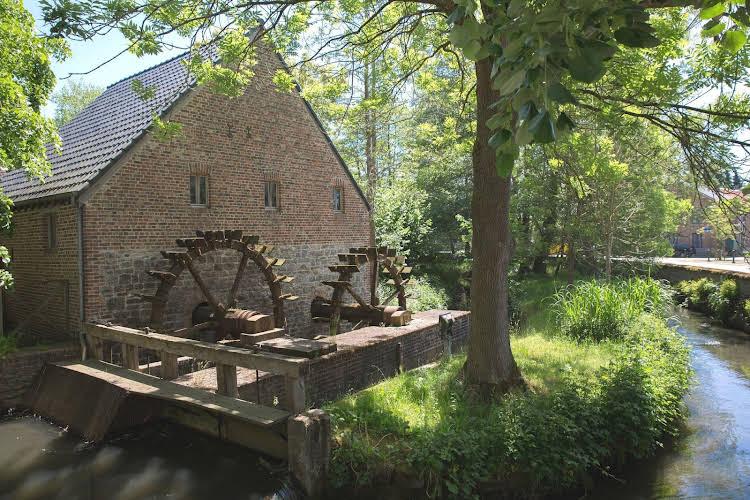 Domaine du Vieux Moulin