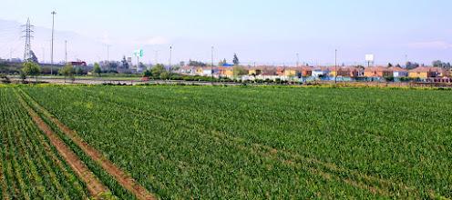 Photo: Lo rural en lo urbano ( Vasta)