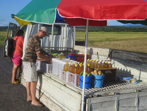 Photo: DELICIOUS honey sold in huge bottles by the roadside