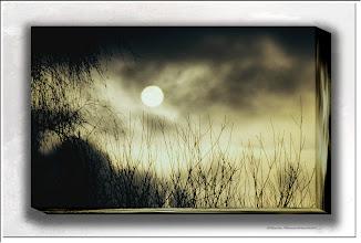 Foto: Gegen den Nebel