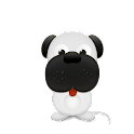 Animal Photo Gallery icon