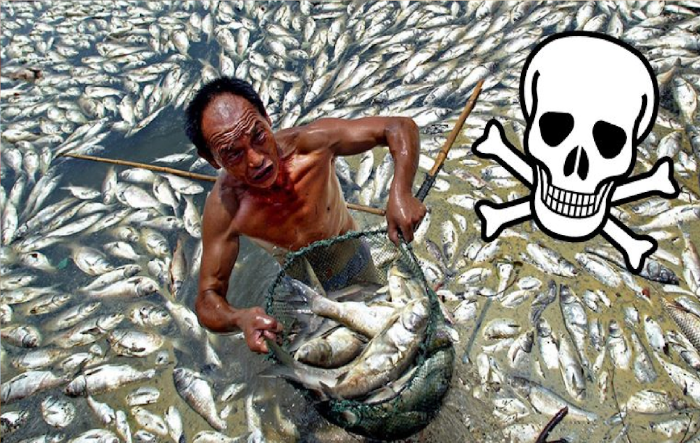 10 Deadliest Foods In China Tainted By Plastic, Pesticides, And Cancerous Chemicals
