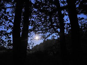 Photo: pleine lune sur la Zad en expulsion, magique