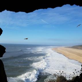 Praia do Norte. by Luis DuarteSantos - Uncategorized All Uncategorized (  )