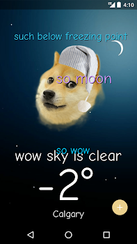 Weather Doge