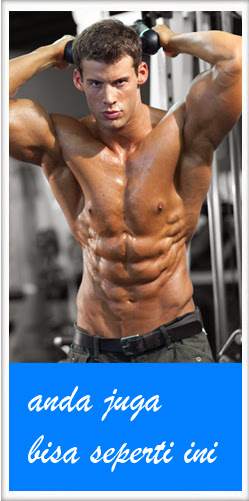 Belanja Alat Fitnes Online