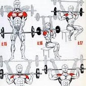 All Shoulder Exercises