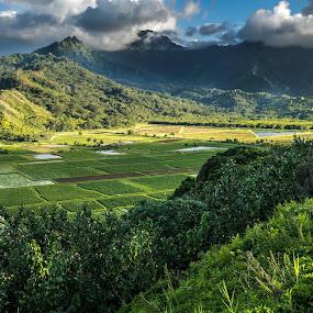by Richard Beckmann - Landscapes Mountains & Hills