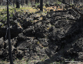 Photo: One excellent example of puhoehoe lava from Sugarloaf. Lassen Nat'l Forest.
