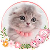 ?Cute Kitty Cat Launcher Theme Live HD Wallpapers Android APK Download Free By Best Launcher Theme & Wallpapers Team 2019