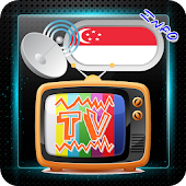 Channel Sat TV Singapore