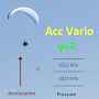Acceleration aided Vario Pro