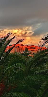 My orange town di acastiglione