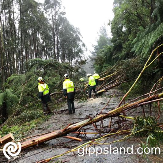 Recovery works are still ongoing in many of our state forests and national parks and public safety zones are still in place in several Gippsland locations, crews across Gippsland are working together helping each other