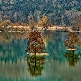 The Autumn Flood by Janez Podnar - Landscapes Waterscapes (  )