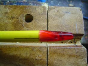 Photo: et on pose l'encoche en la faisant tourner 1/4 de tour dans un sens puis dans l'autre 2 ou  fois pour étaler les gouttes de colle puis on ajuste le renflement sur la ligne de plume coq