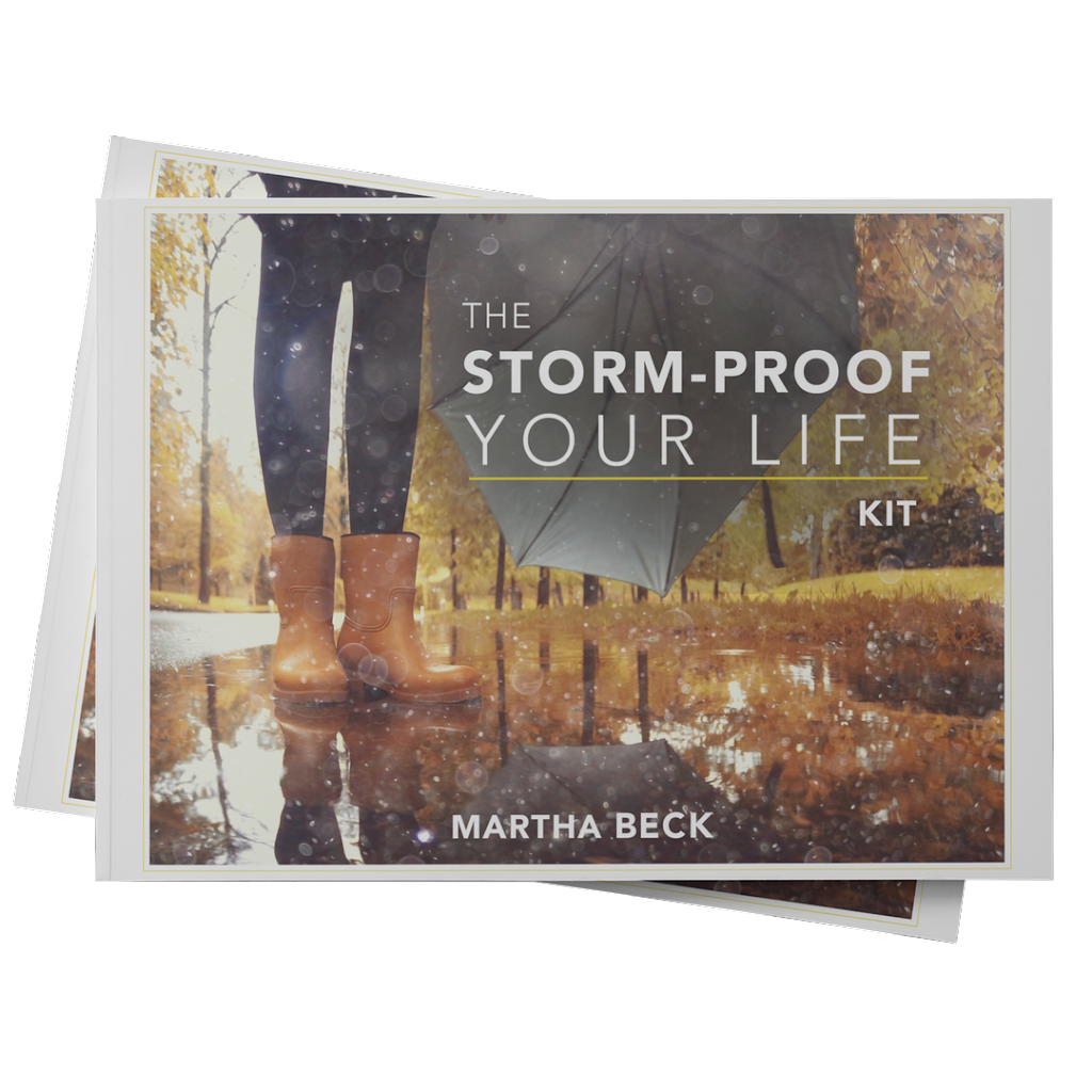 The Storm-Proof Your Life Kit