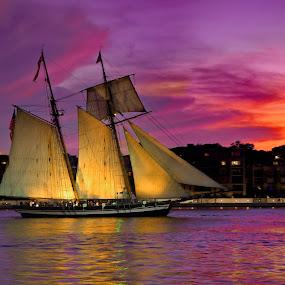 Multi Masted Sunset by Mike Lennett - Transportation Boats ( pink sky, ship, sunset, mike lennett, sunrise, boat, glow, masts )