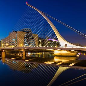 Samuel Beckett Bridge by Ivo Kivistik - Buildings & Architecture Bridges & Suspended Structures ( pwcbridges )
