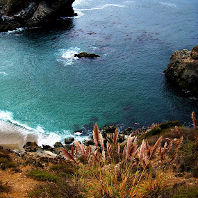 Julia Pfeiffer Burns State Park by Shanna Twomey - Landscapes Beaches ( water, sand, cliffs, beach, rocks )