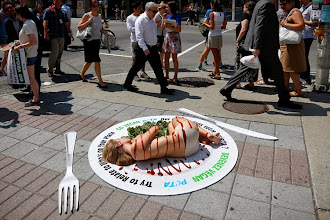 Photo: An activist with PETA (People for the Ethical Treatment of Animals) lies covered with barbecue sauce during a protest against the consumption of animal products in Ottawa July 17, 2013.  REUTERS/Chris Wattie  (CANADA - Tags: CIVIL UNREST ANIMALS FOOD TPX IMAGES OF THE DAY) - RTX11PPA